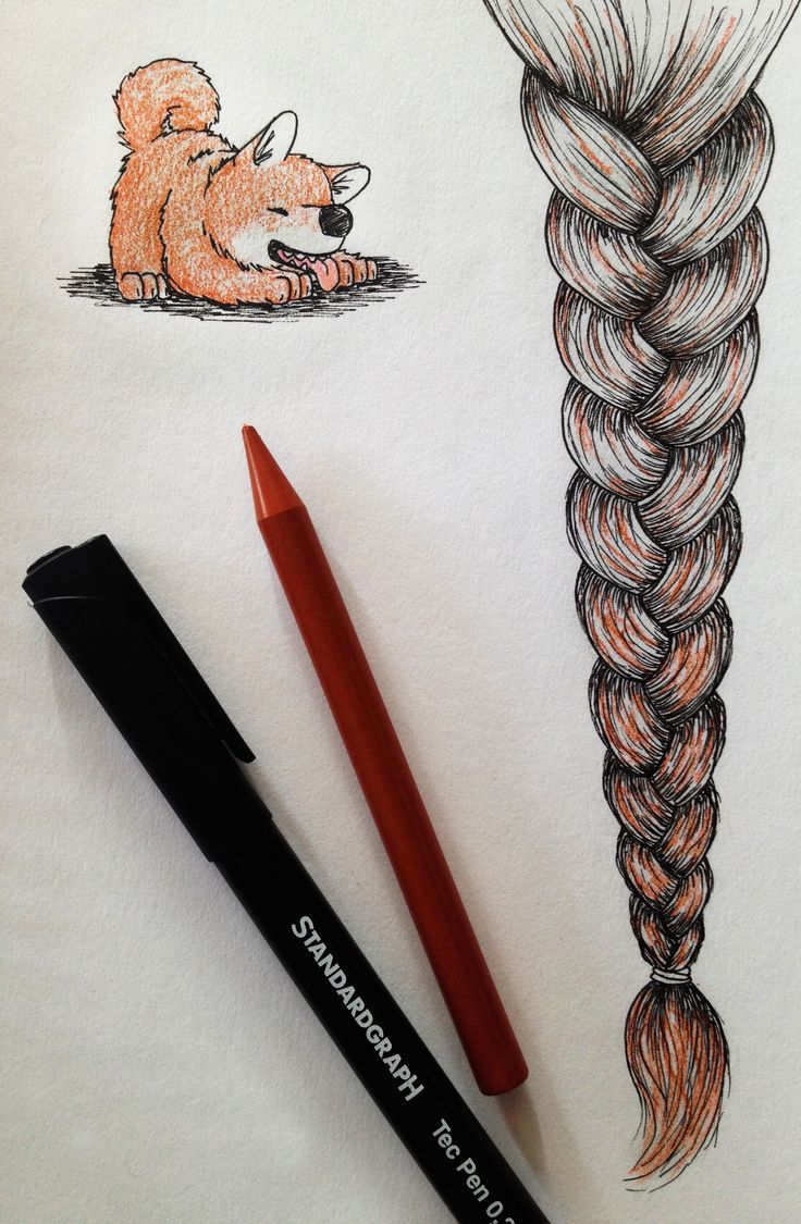 Black and brown. Drawing dogs and braids #art