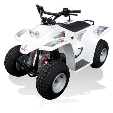 Buzz 50 Quadzilla Junior Quad. For more information: http://www.fresh-group.com/junior-quads.html