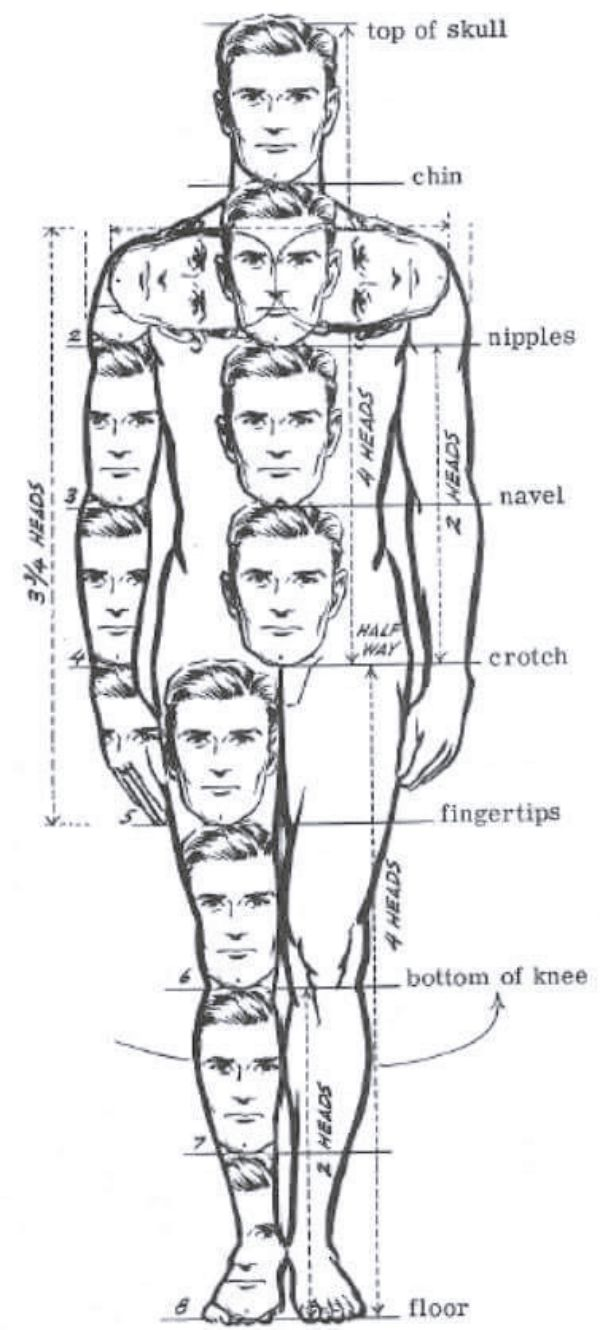 HOW TO DRAW BODY SHAPES: 30 Tutorials For Inexperienced persons