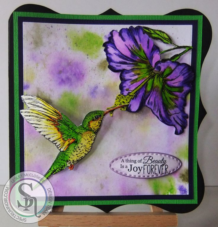 Sheena's A little bit sketchy Tropical Nectar stamp set coloured with Spectrum Noir Aqua pens. More details can be found at http://stampingbubbles.blogspot.co.uk/2016/08/tropical-nature.html
