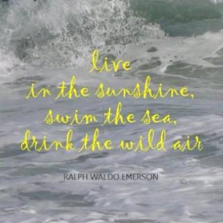 Live in the sunshine, swim in the sea, drink the wild air.
