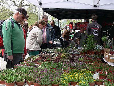 Pflanzenmarkt im Hessenpark - Verkaufs- und Informationsveranstaltung für Pflanzenliebhaber und Gartenfreunde