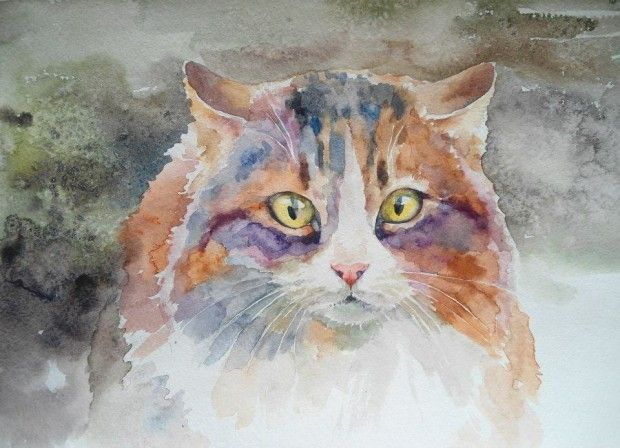 Watercolor cat. Cristina Grinciuc