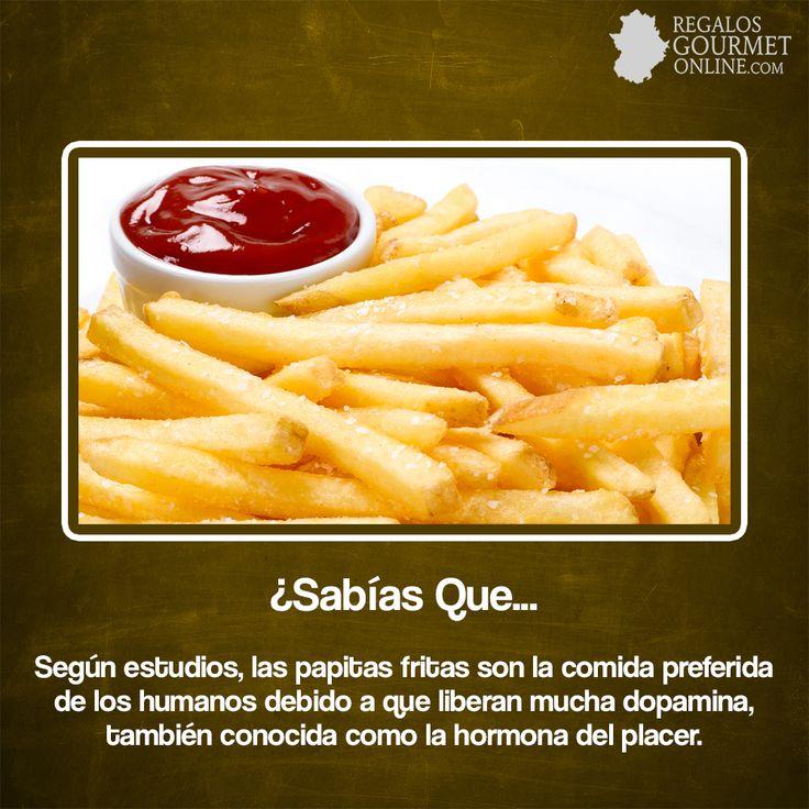 ¿#SabíasQue Las papas fritas son la comida prefería de los humanos?