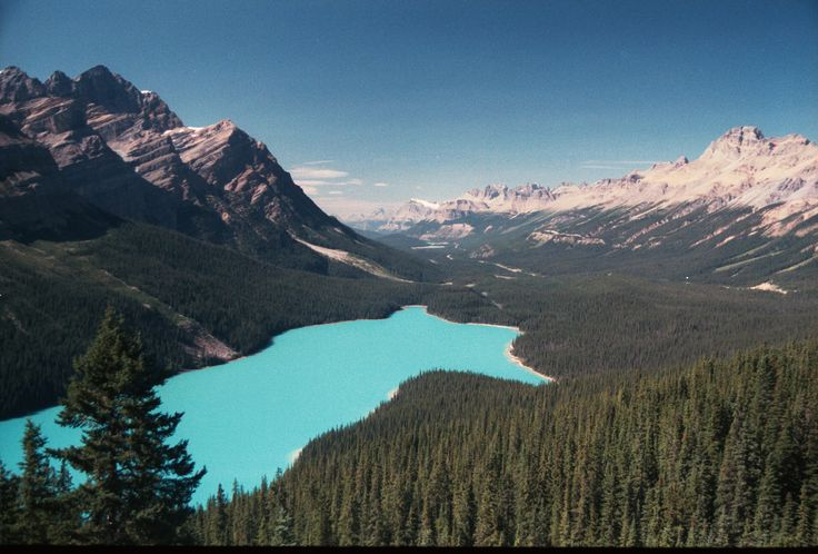 Peto lake is in Banff National park; and because it is glacially fed it is a beautiful bright blue like Moraine and Louise Lakes.