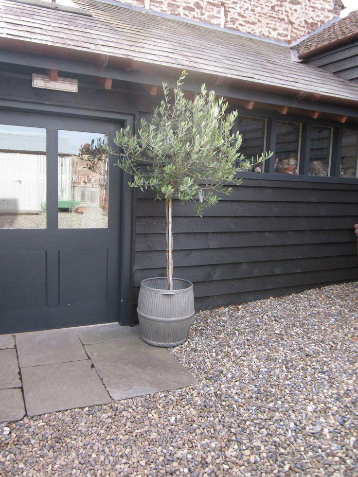 baileys home + garden  photo by tricia foley