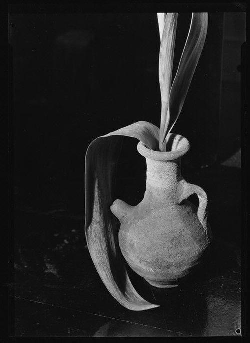 Уокер Эванс Неглазурованной Керамическая ваза с Тюльпан листья около 1928-34