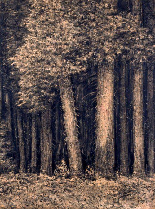 Leon Wyczółkowski (Polish, 1852-1936), Las [Forest], c.1930. Crayon on paper, 61.3 x 45.7 cm--Tumblr