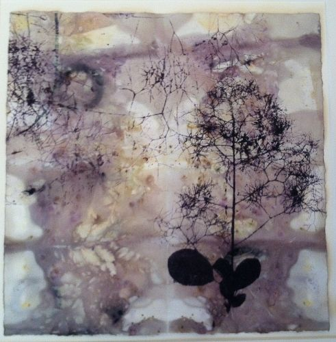 Paper lithography on paper eco-dyed by the artist (Contemporary Printmaking, Lithographs, Abstract)