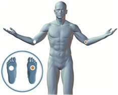 additional pain relief protocols in The LifeWave Handbook , LifeWave ...