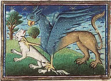 Medieval Bestiary : Griffin Gallery Museum Meermanno, MMW, 10 B 25, Folio 5r