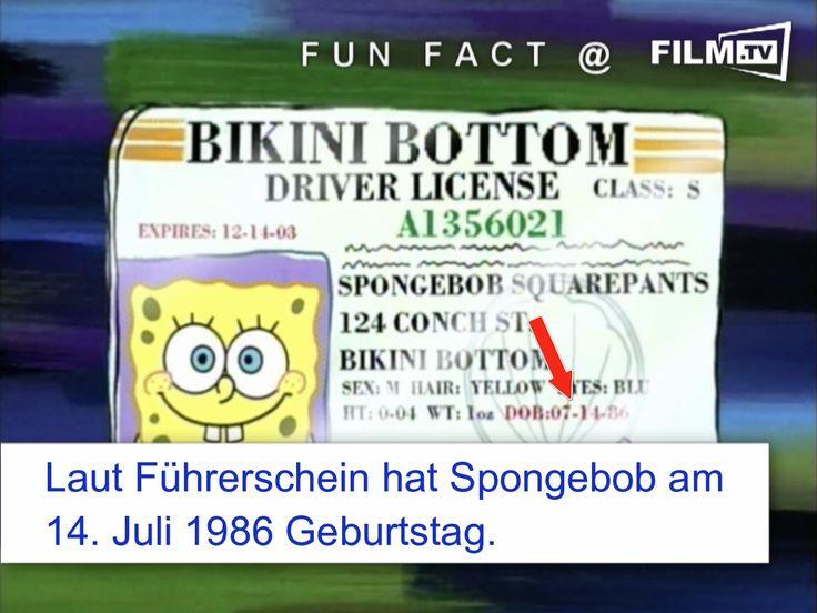 Kennst du jemanden, der mit #Spongebob #Geburtstag hat?  #funfact