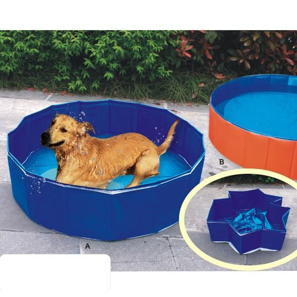 51 Best Images About Dog Pools On Pinterest Weenie Dogs Dog Pools And For Dogs