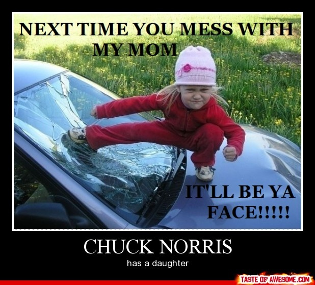Chuck Norris Daughter by jiebos - Meme Center