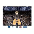 48 in. H x 72 in. W Kentucky Basketball Mural Rupp Arena Wall Mural, Multi
