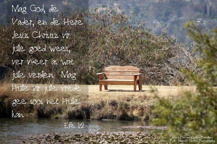 Dag 175 Efe 1:2 Mag God, die Vader en die Here Jesus Christus vir julle goed wees, ver meer as wat julle verdien. Mag Hulle vir julle vrede gee soos net Hulle kan.