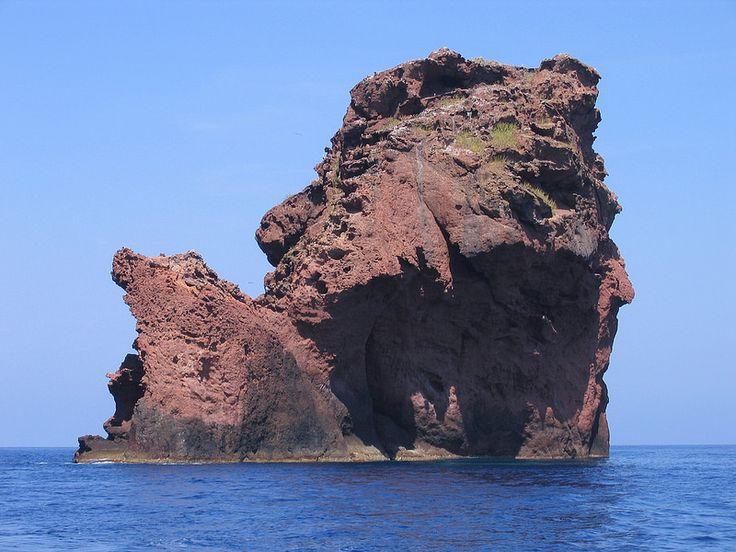 Scandola est une réserve naturelle en Corse à la fois marine et terrestre, également inscrite sur la liste du patrimoine mondial de l'Unesco Classée en 1975, elle occupe une biodiversité remarquable entre l'étage médiolittoral et l'étage circalittoral de sa partie sous-marine. Elle a été jugée représentative des écosystèmes et biocénoses de la façade maritime du Parc naturel régional de Corse qui en est le gestionnaire.