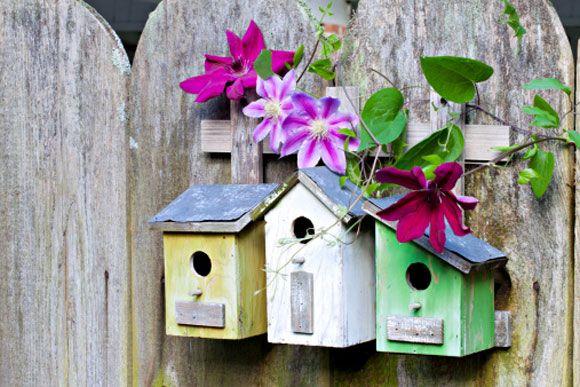 Conheça 10 incríveis casas de passarinhos para o seu jardim!
