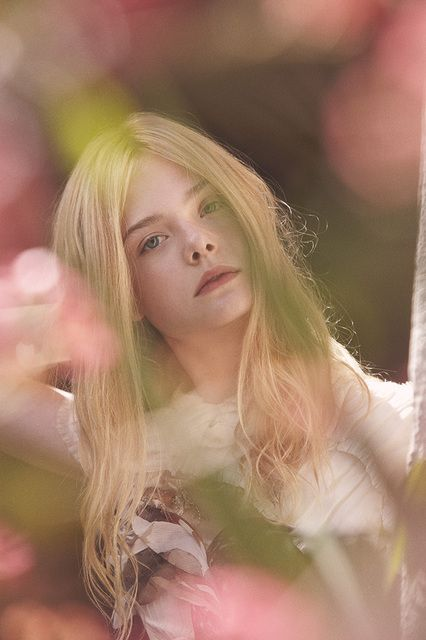 Elle Fanning shot by Todd Cole for DossierCole Photography, 1 6 Elle, Favorite Celebrities, Soft Colors, Fans Sisters, Todd Cole, Tional Fans, Fashion Photography, Elle Fanning