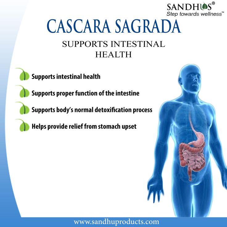 Benefits of cascara sagrada