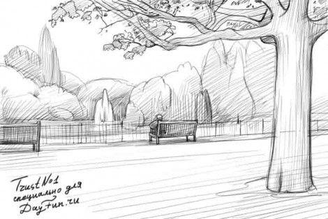 Как нарисовать парк карандашом поэтапно