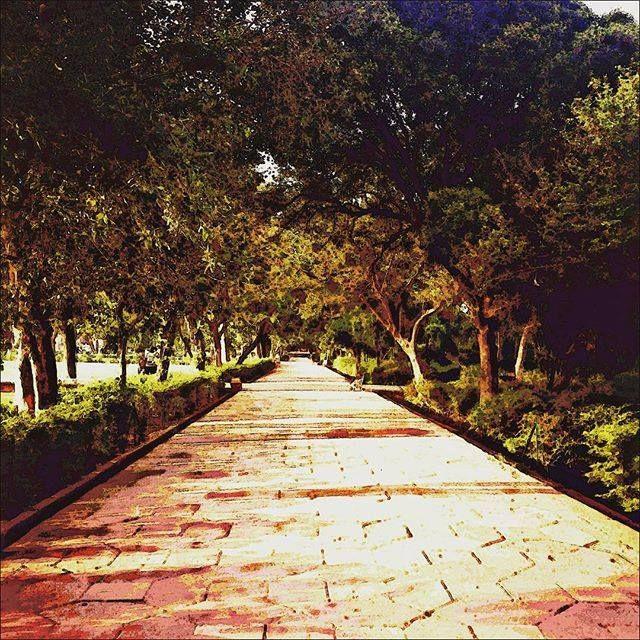 #Agra #uttarpradesh #India #architecture #building #buildingporn #history #historical #heritage #travel #international #iphoneonly #instagood #igers #taj #tajmahal #worldwonder #wondersoftheworld #trees #walkway #painting #drawing by tyler.kemper #TajMahal #IncredibleIndia #Agra