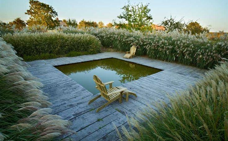 pond--patrick et sylvie quibel, le jardin plume, auzouville-sur-ry