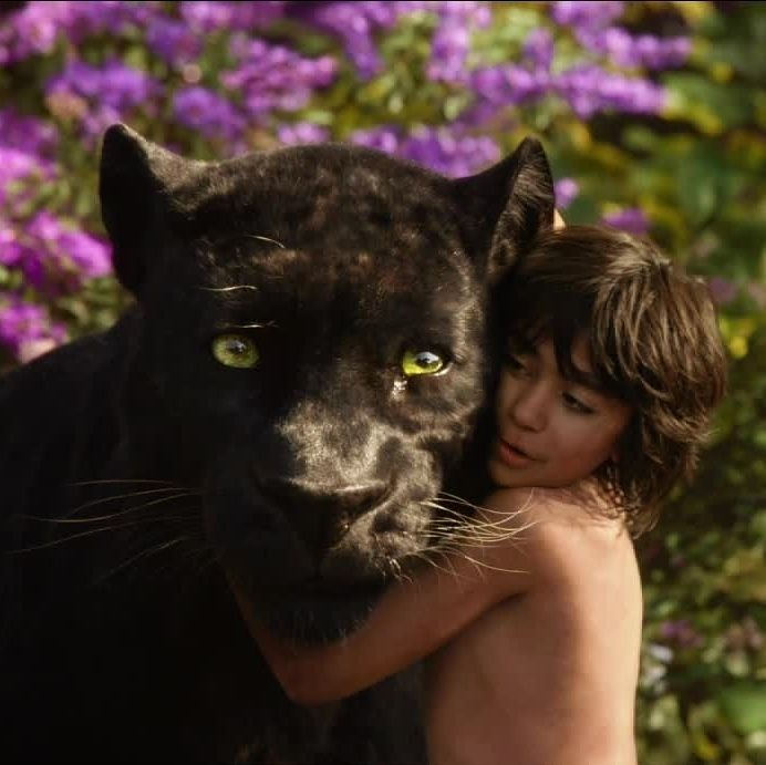 "Which ""Jungle Book"" Character Are You?You got: Bagheera   You're a fiercely independent person who doesn't need much in life. You know what you value, and you live by a strict moral code. You let few people into your inner circle, but those few will have your friendship and loyalty for life."