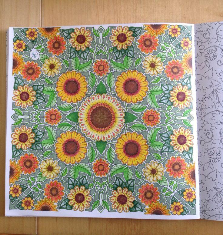 Secret Garden - Sunflowers
