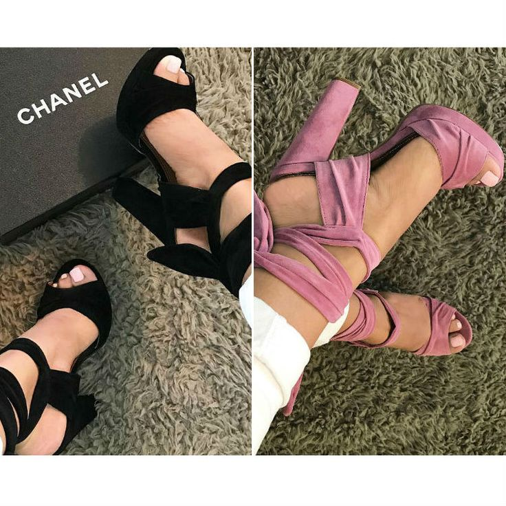 Black or Mauve?