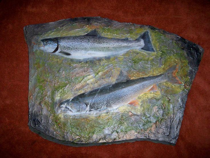 Fish FH0001