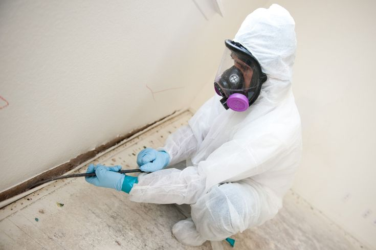 Mold growth can be a serious problem. Browse this site http://waterproofingsouthjersey.com/new-jersey-mold-remediation/ for more information on Mold Remediation NJ. This is because it can lead to property damage besides increasing the risk of health issues to everyone who resides there. Mold remediation NJ specialists are trained and are more likely to produce better results, because of their training.  Follow us : https://moldinspectionnj.wordpress.com/