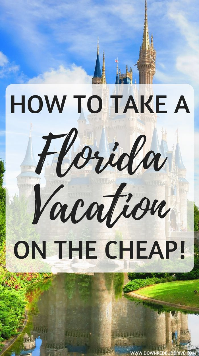 How To Take a Florida Vacation on the Cheap | Florida Vacation | Cheap Disney Vacation | Disney World | How to Save at Disney World | Cheap Vacation | Florida Travel | Family Vacation | Cheap Family Vacation | Traveling Tips for Disney World | Traveling Tips for Florida | How to Save on Vacation |