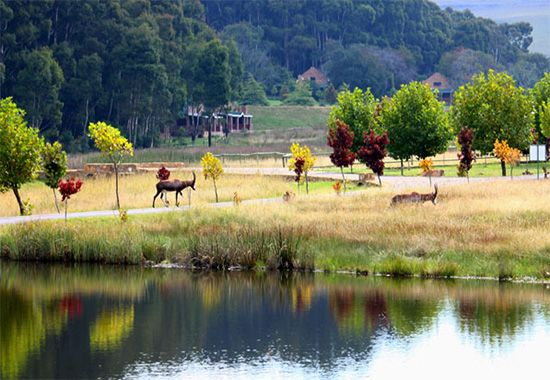 Dullstroom, affectionately known as the Gem of Mpumalanga, is close to the Panorama Route area featuring magnificent views of landscapes such as the Blyde River Canyon, Echo Caves and Pilgrim's Rest. Dunkeld Country Estate is a luxury game-and-trout lodge, with a heritage dating back more than 100 years. http://blog.suretravel.co.za/2013/02/romantic-destinations-in-south-africa.html
