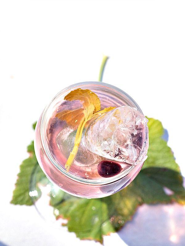 les cuisines de garance vin de feuilles de cassis pour vos ap ritifs d 39 t cocktails et. Black Bedroom Furniture Sets. Home Design Ideas