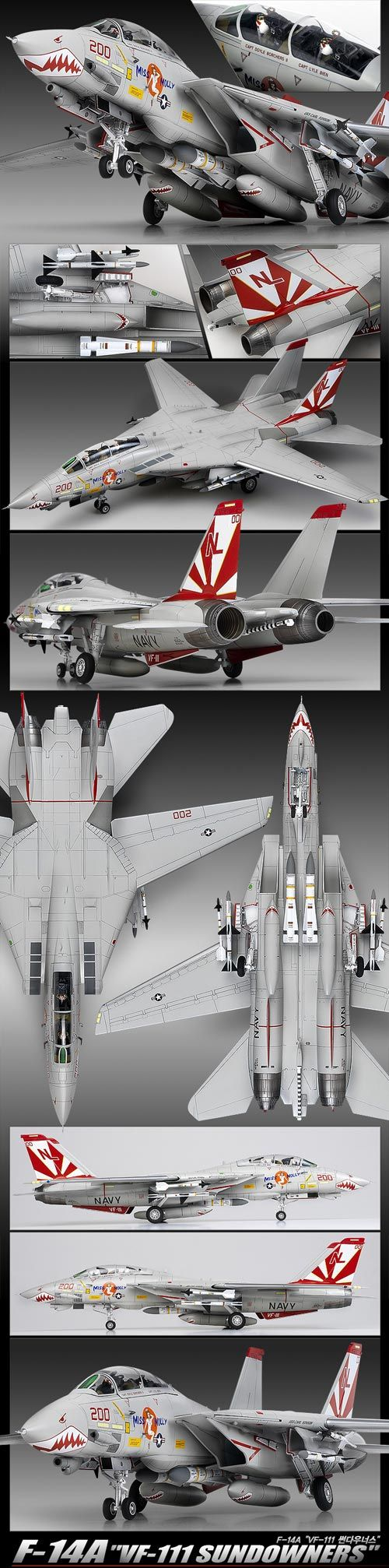 In the original pic you can read: Vought F-8E 'VF-111 Sundowners 1/32 Scale Model But I see a Tomcat F-14