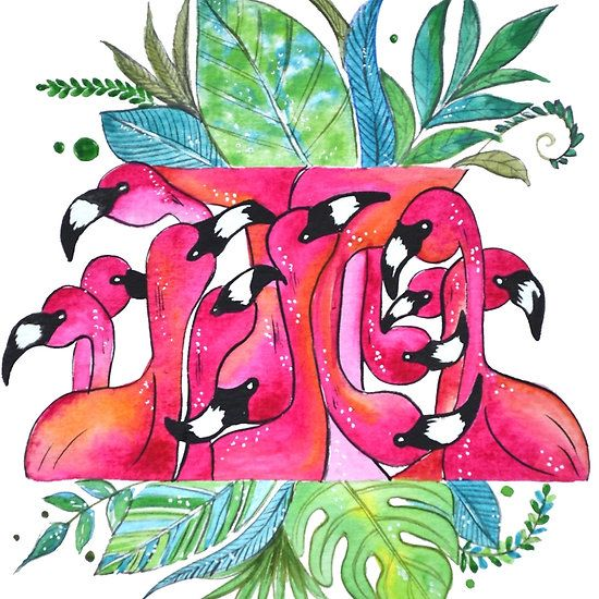 Flamingo, tropical isl