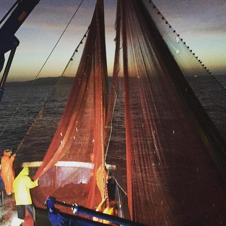 """""""L'homme est en mer. Depuis l'enfance matelot Il livre au hasard sombre une rude bataille. Pluie ou bourrasque il faut qu'il sorte il faut qu'il aille..."""" Extrait de la légende des siècles de Victor Hugo #repostengelnetze #filetscommeunvoilier #fishing #pecheurs #mer #sunrise #flotssombres #nuit #vagues #waves #poissons #metier #passion #courage #marins #deshommessurlamer #bateaux #sauvetages #ocean #poemes #inspiration #jattendssurlaplage #leregardsurlamer by magporcelaine…"""