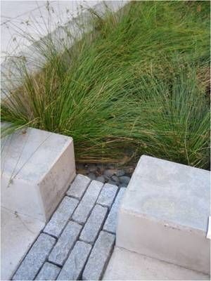 Bioswales filter stormwater in Portland, OR. Click image for many more examples and visit the Slow Ottawa 'Stormwater Solutions' board for more sustainable water management.