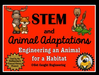 Stem And Animal Physical Adaptations Stem And Engineering For