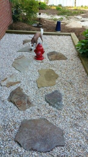 Image result for how to build a dog potty area yard gravel