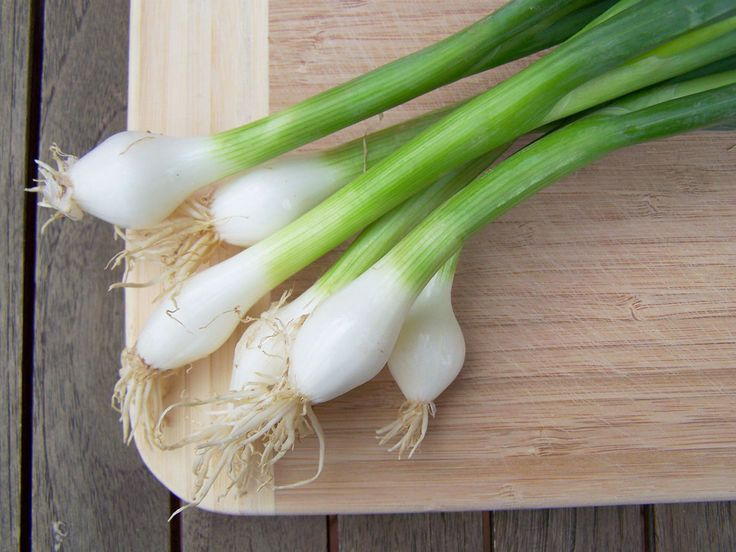 10 plantes et légumes que vous pouvez faire repousser indéfiniment - Santé Nutrition
