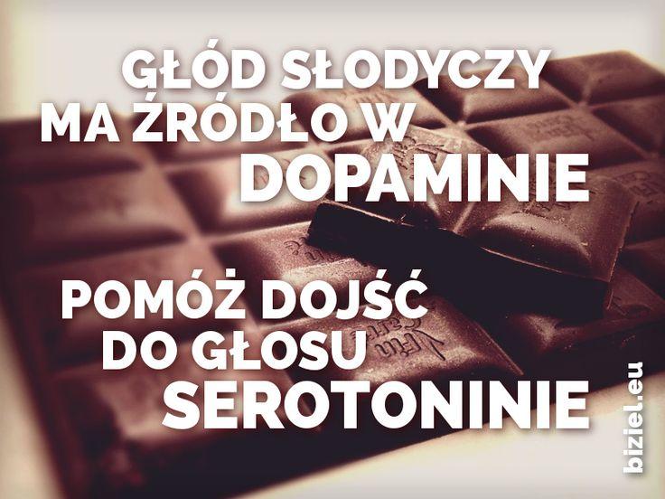 W obliczu stresu trzeba zjeść znacznie więcej tej samej czekolady, na którą mamy ochotę dzięki dopaminie, aby osiągnąć ten sam poziom zadowolenia. Dzieje się tak ponieważ stres blokuje działanie serotoniny i gaba. Dokonuj więc mądrych wyborów.