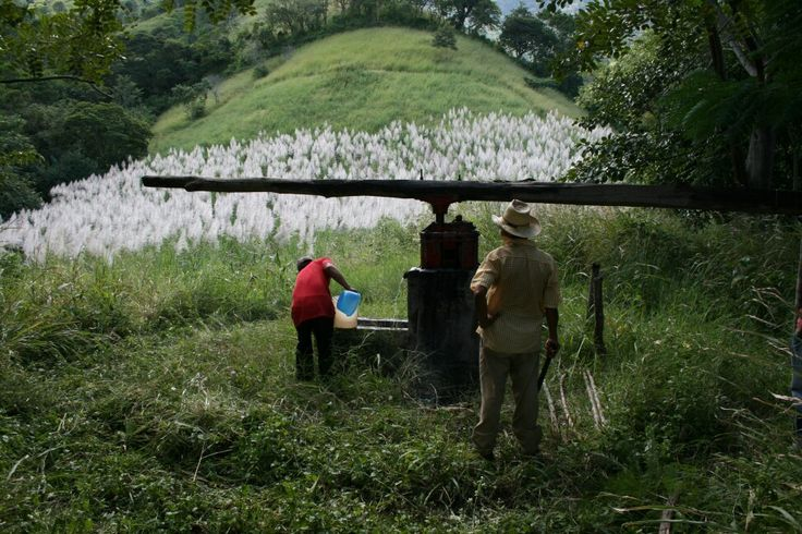 ©hrosem #ecotoursvoyages - Nicaragua