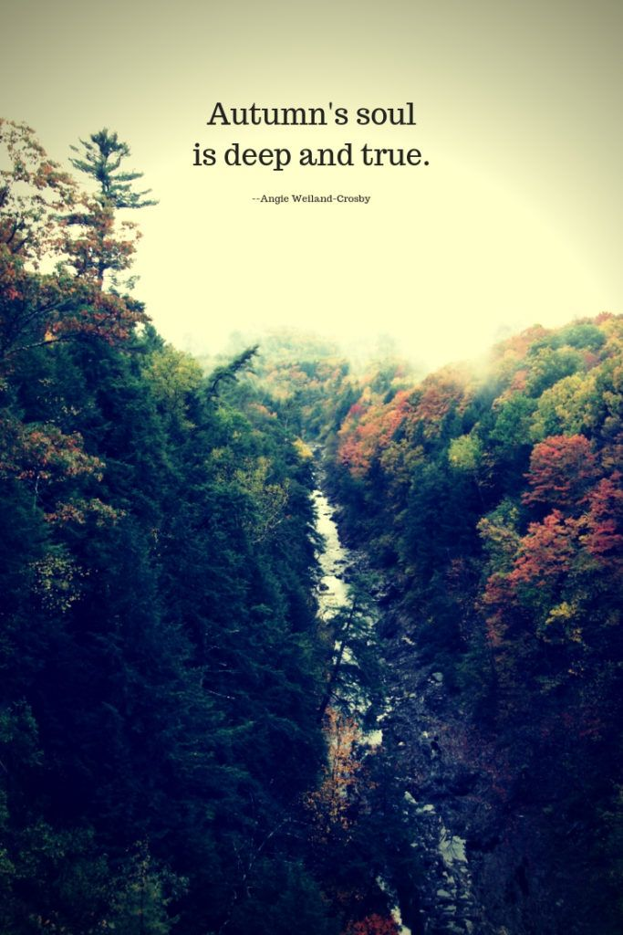 autumn quotes to enchant and deepen the soul nature quotes