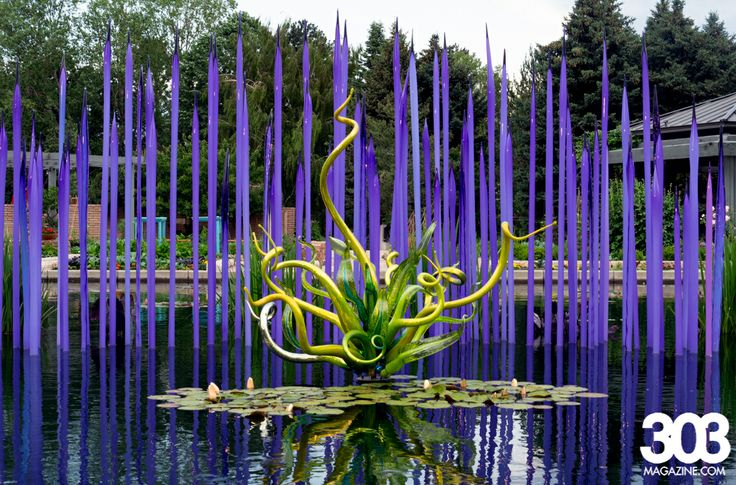 Chihuly Exhibit Denver Botanic Gardens Denver Gardens Pinterest Gardens Beautiful And
