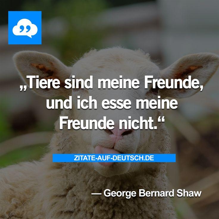 #Essen, #Freunde, #Spruch, #Sprüche, #Tiere, #Zitat, #Zitate, #GeorgeBernardShaw