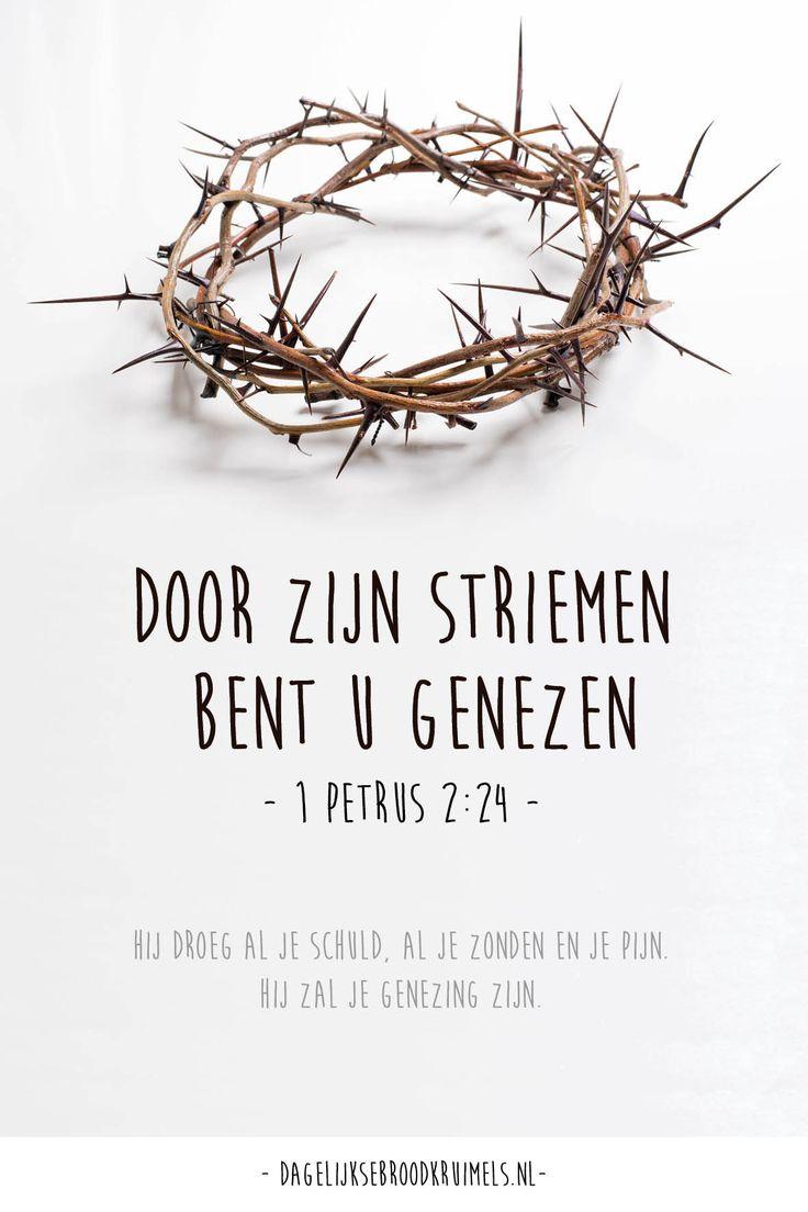 Door Zijn striemen bent u genezen. 1 petrus 2:24
