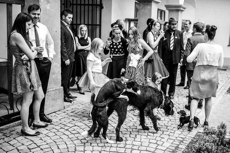 Свадебный фотограф Petr Wagenknecht (wagenknecht). Фотография от 01.07.2015