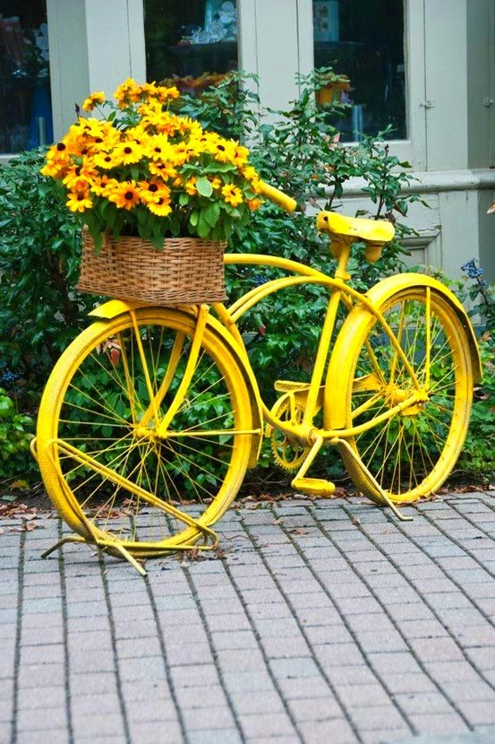 Bike basket as flower containers. Love the yellow bike & flowers.